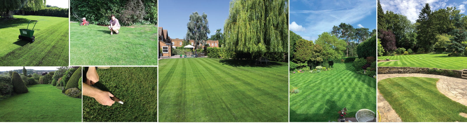 Surrey Lawn Care Customer Lawns