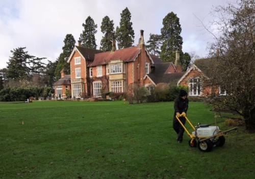 Moss control in Surrey